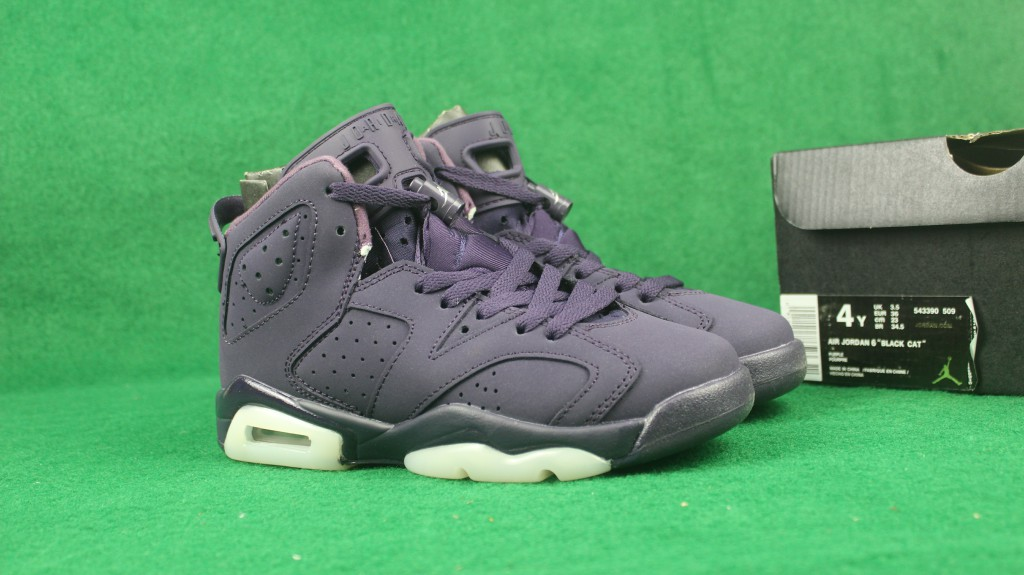 Air Jordan 6 GG Purple Dynasty Shoes